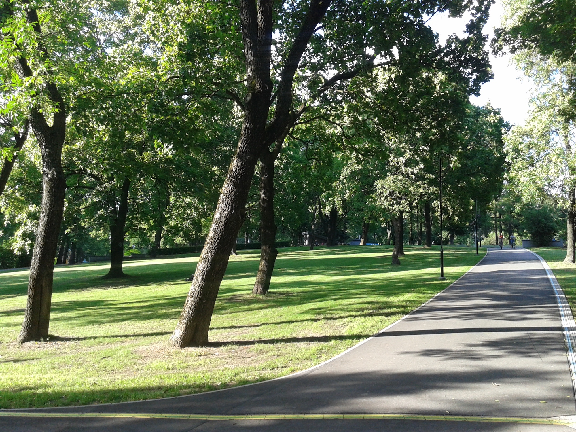 Running path in the park