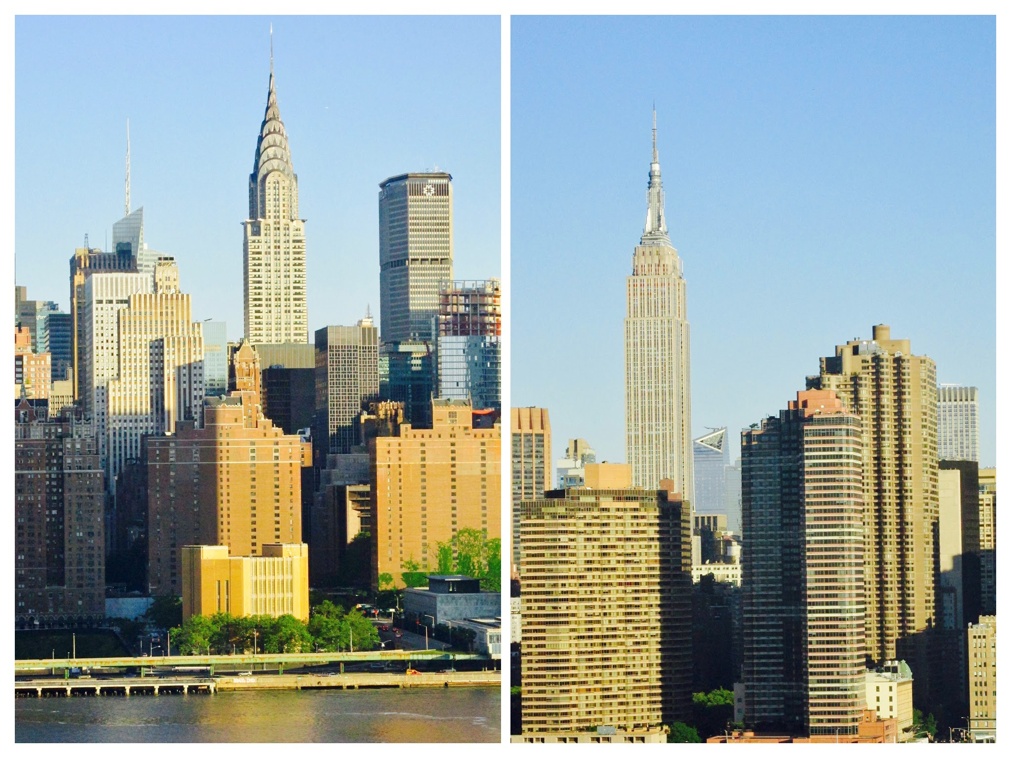 Urban Treetops - New York