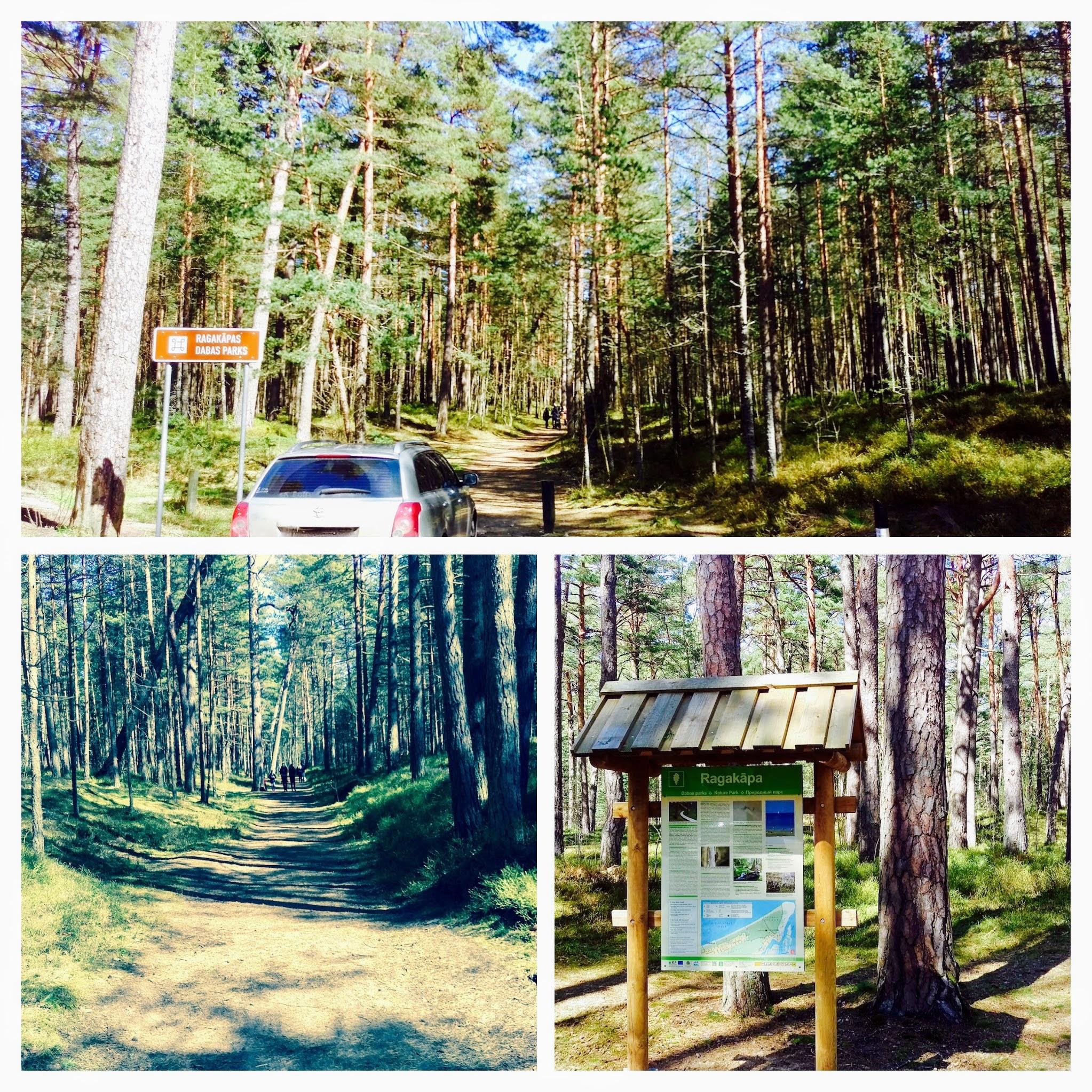 Ragakapas Nature Park, Jurmala - Urban Treetops