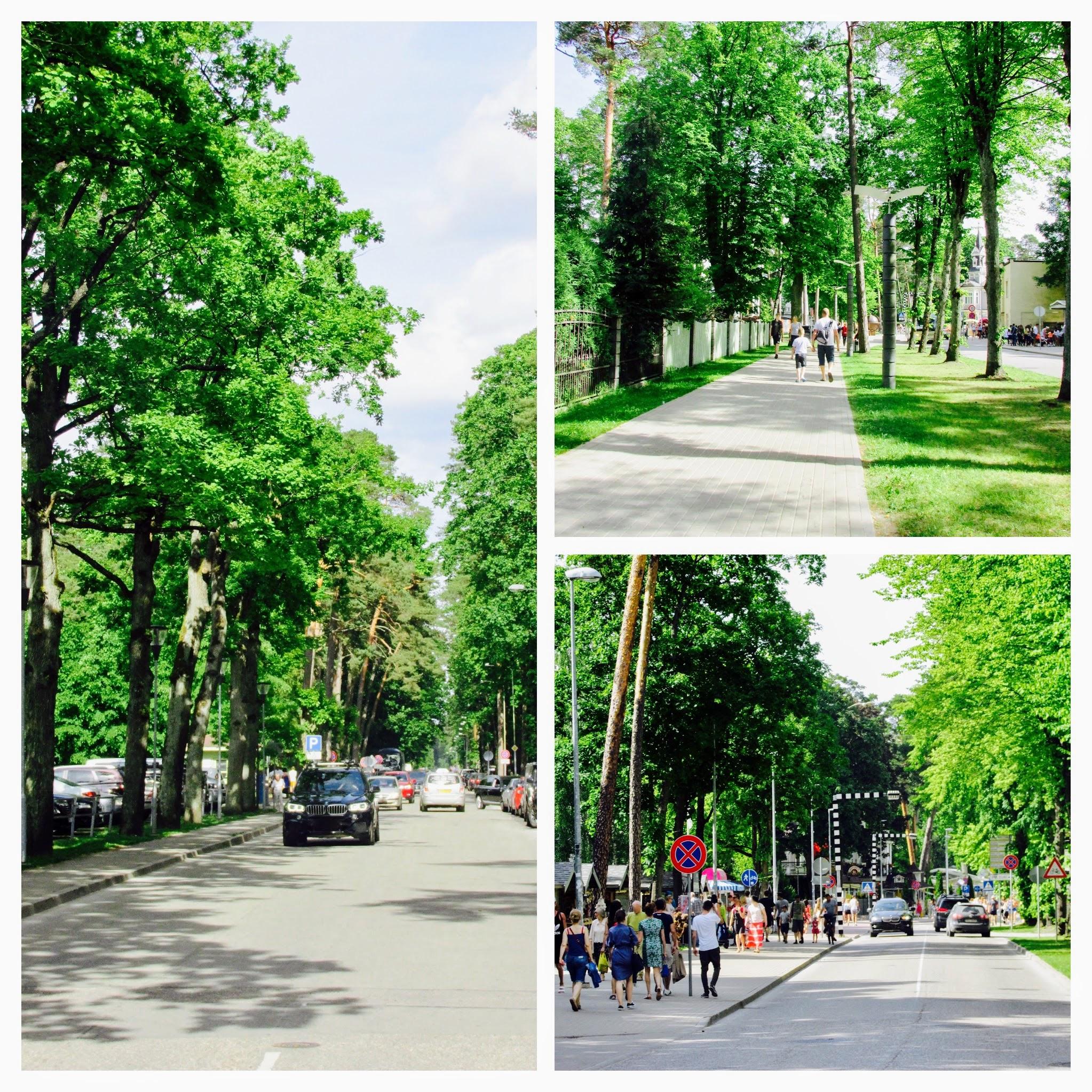 Summer in its splendor, Jurmala - Urban Treetops