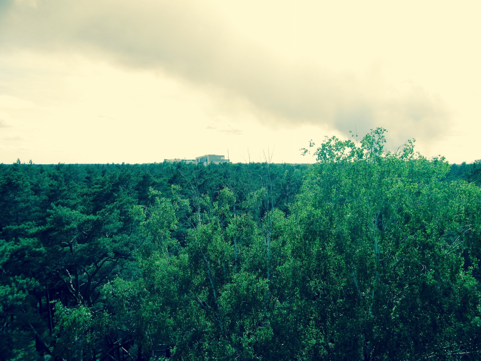 View of Jurmala from the viewing tower - such a green city - Urban Treetops