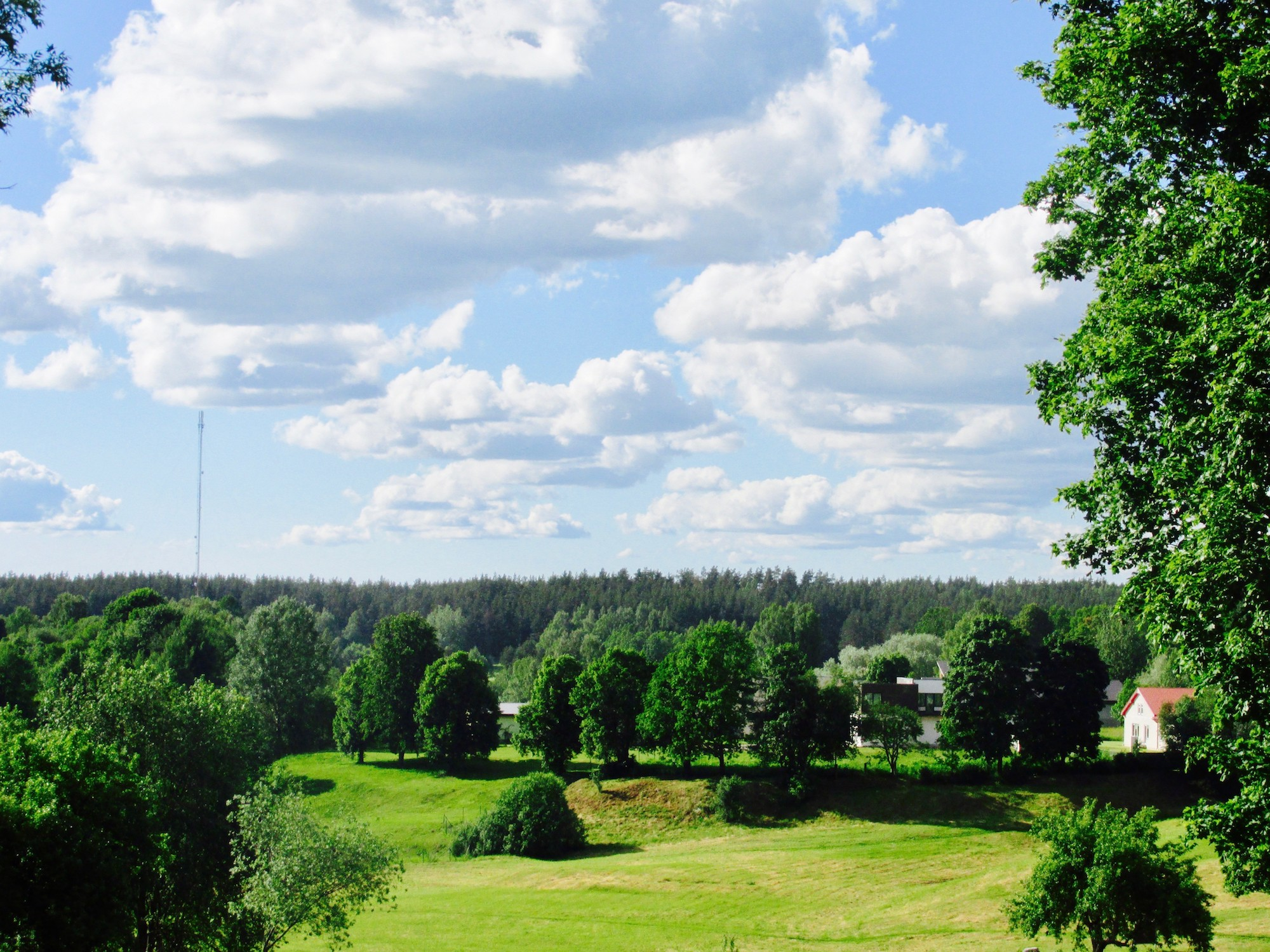 The panorama of green in Cesis!