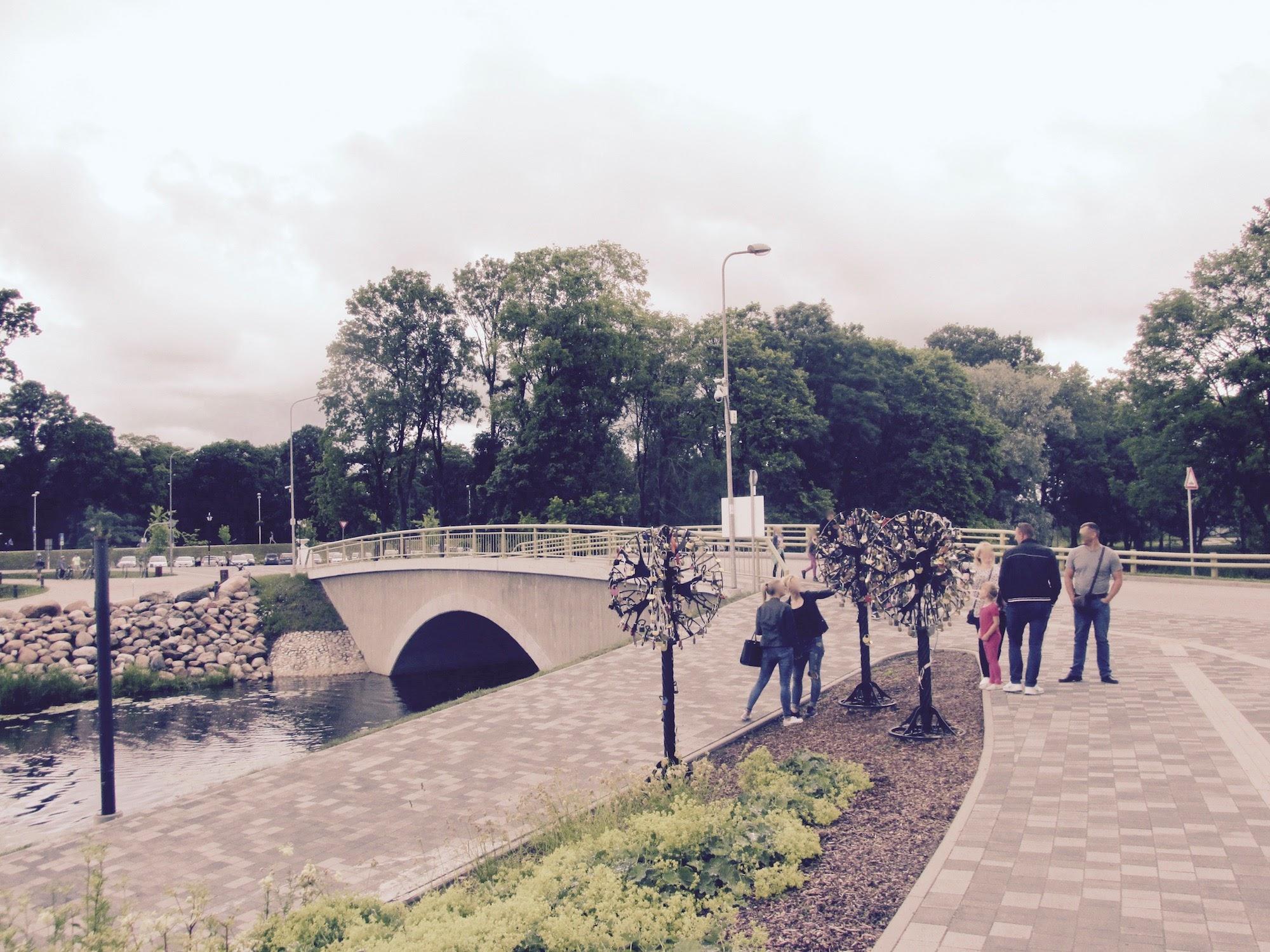 People enjoying summer in Jelgava - Urban Treetops