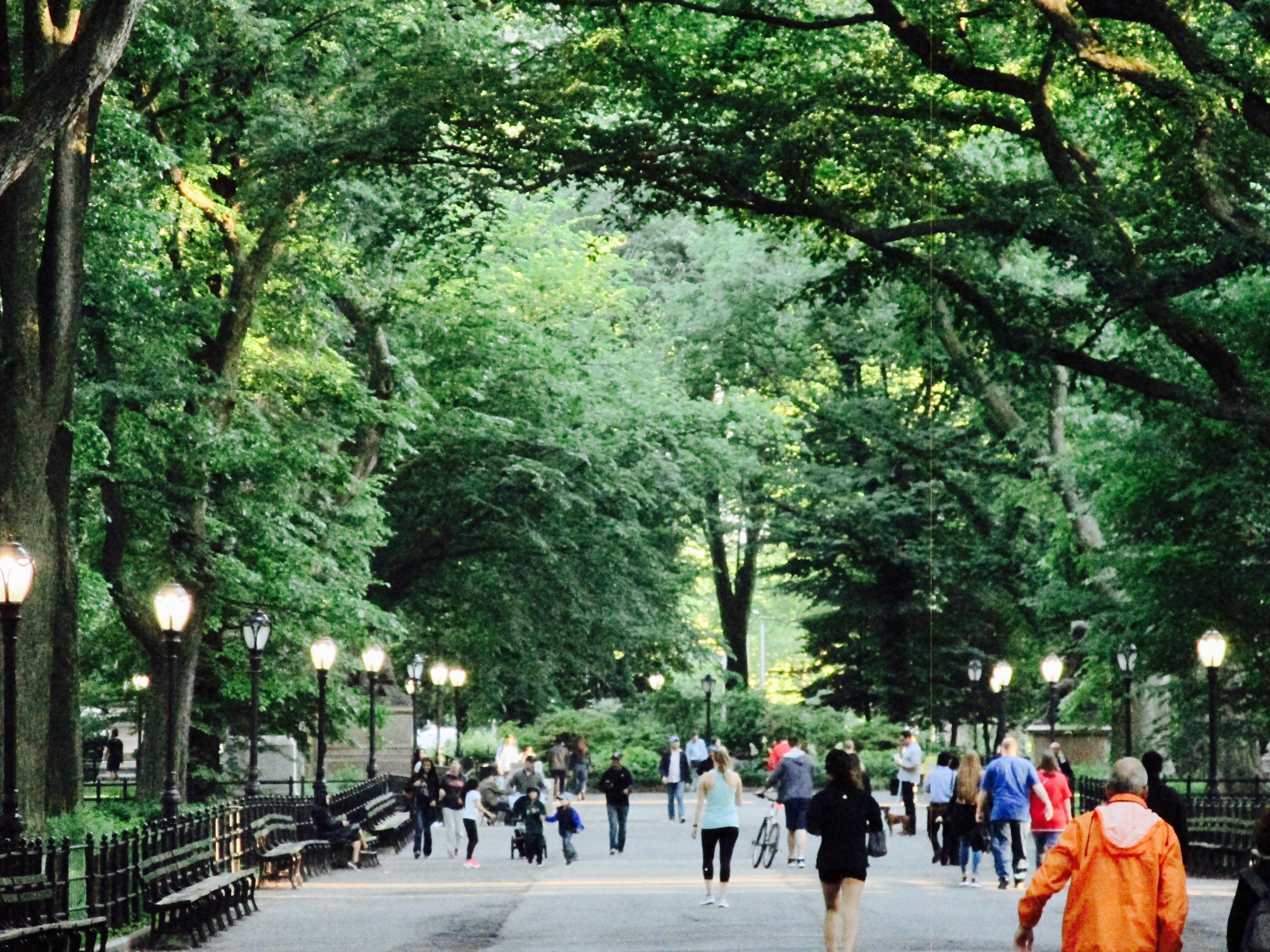 People of New York - by Urban Treetops