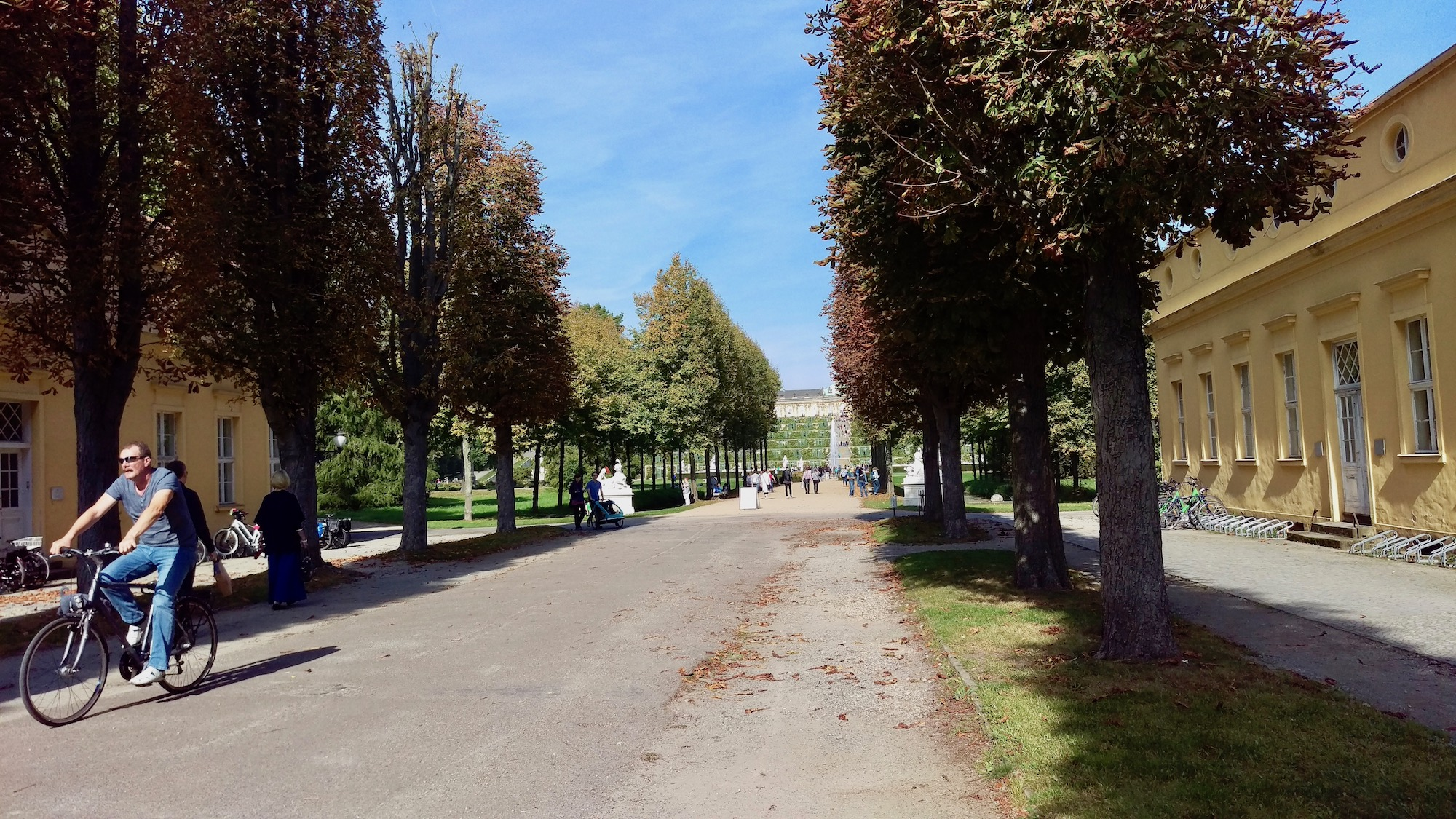 The alley that connects with Sanssouci palace.