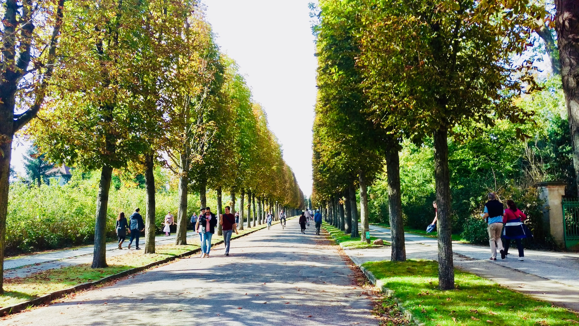 Sanssouci Park is a great place for walking and clearing your mind.