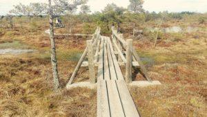 Kemeri National Park in Riga