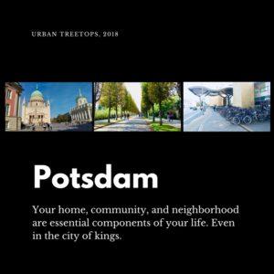 Potsdam, Germany - Urban Treetops