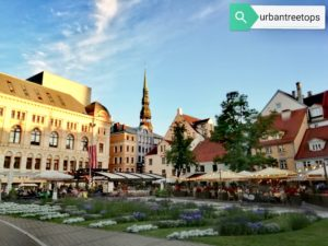 Which is your favourite neighborhood in Riga?