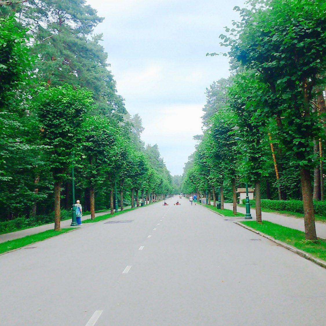 Green environment in Mezaparks