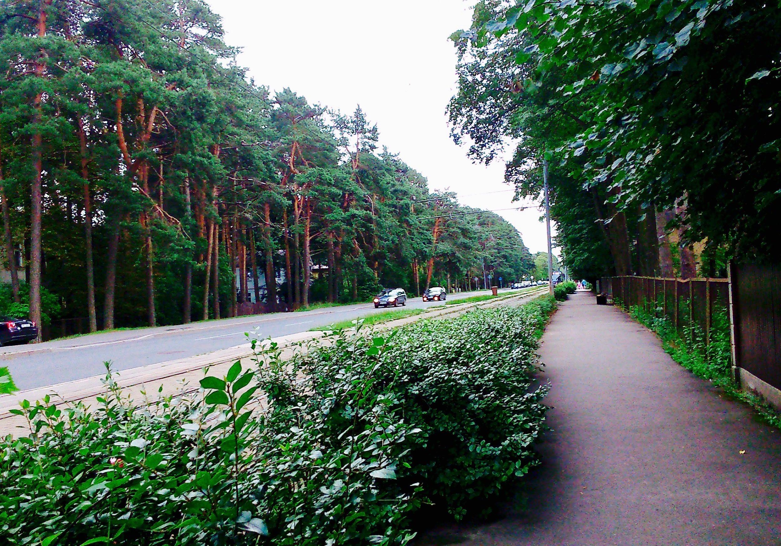 Green zones in Mezaparks