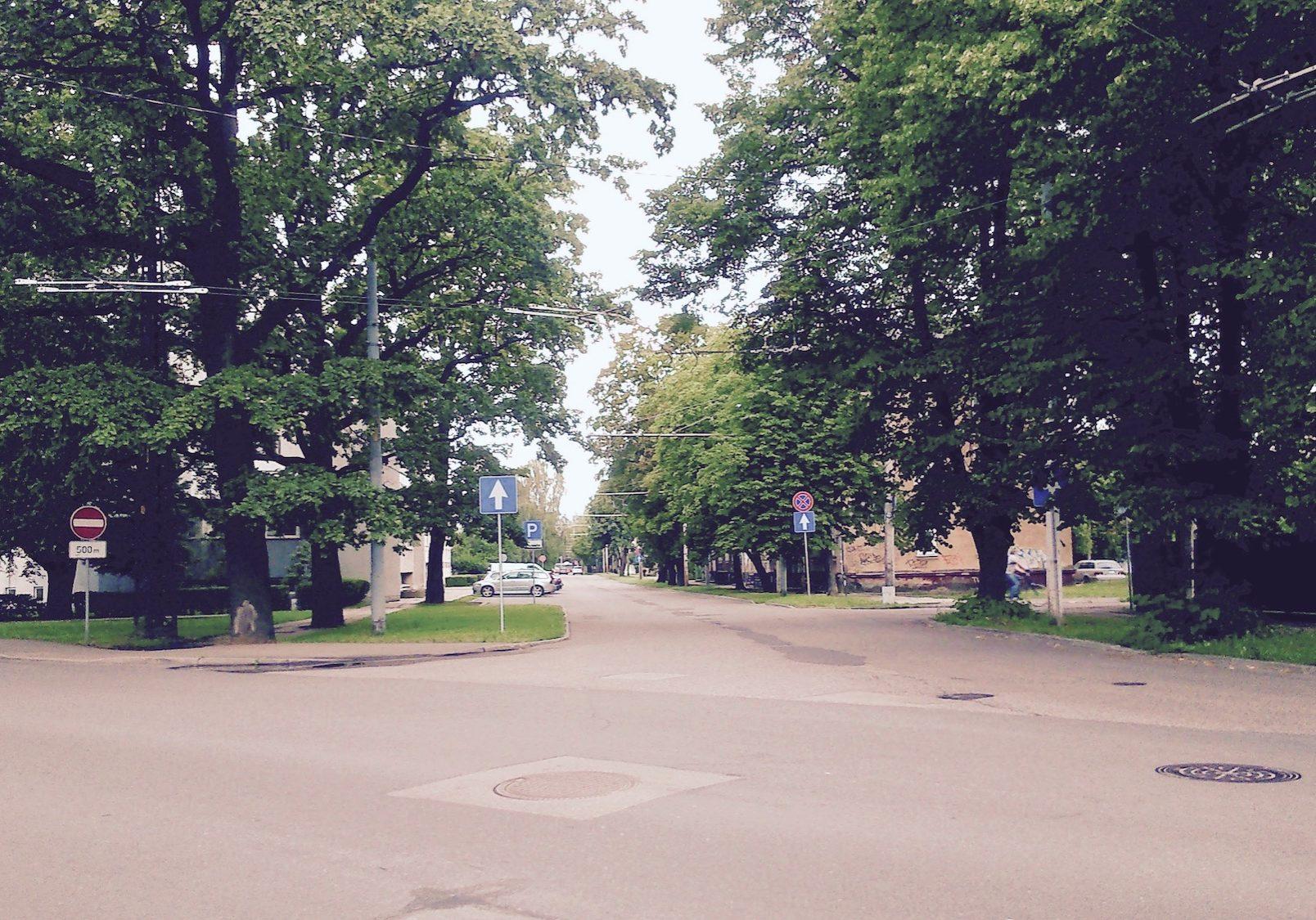 Teika ir viena no zaļākajām apkaimēm Rīgā