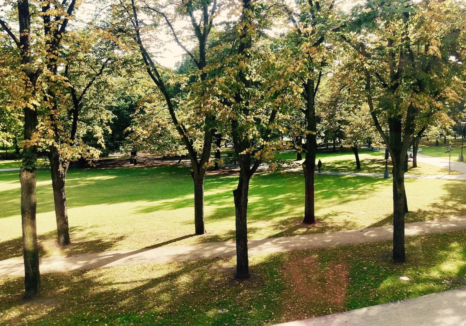 Green zones - Esplanade Park is a centrally located park which is almost 9 ha large