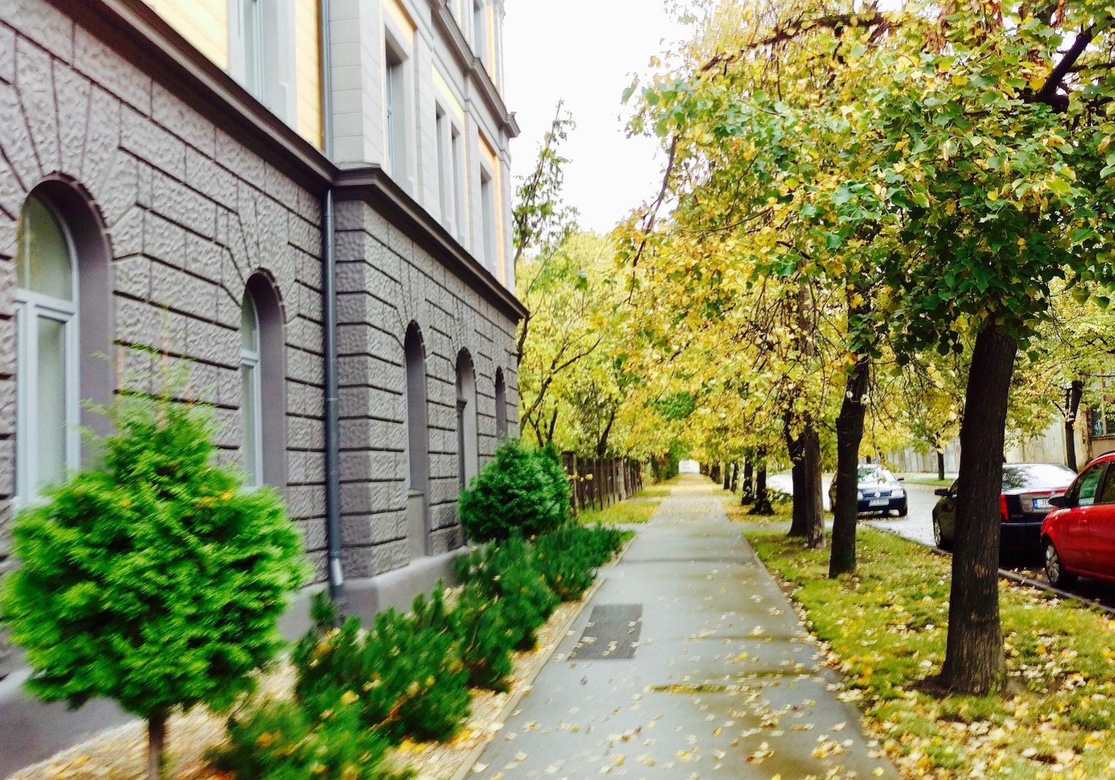 Narvas Street