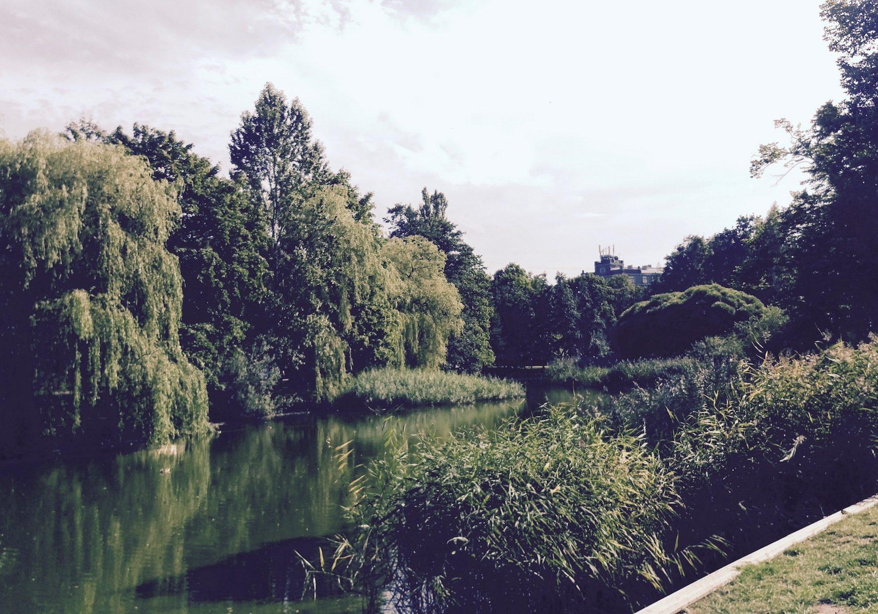 Pond in Viesturdārzs